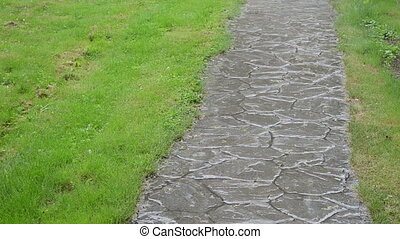 strong lush cobbly path - Strong lush rainfall water drops...