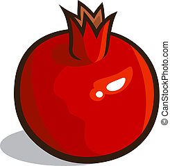 Pomegranate - Vector illustration of a pomegranate isolated...