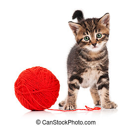 Cute kitten - Cute little kitten with ball of red threads on...