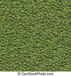Laurel Bush Seamless Tileable Texture - Evergreen Laurel...