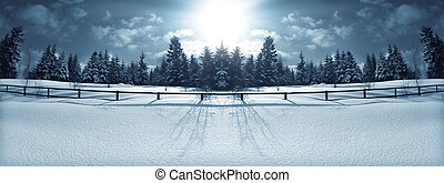 Winter forest - Panorama of the winter forest behind a...
