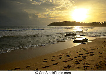 Golden sunset on the tropical desert beach of Mirissa,...