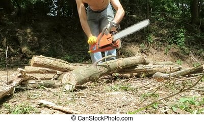 chainsaw - Man with chainsaw working in a forest