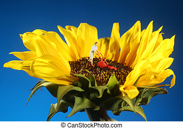 Plastic Person Mowing Grass on a Sunflower - Miniature...