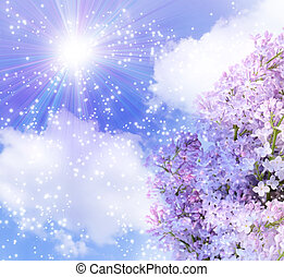 Sun in the sky and lilas - Lilac and sun in the sky clouds