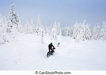 biker in winter, Orlicke Mountains, Czech Republic