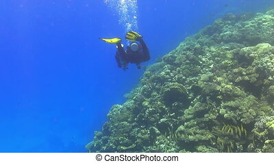 Diver make to dive in coral reef, Red sea