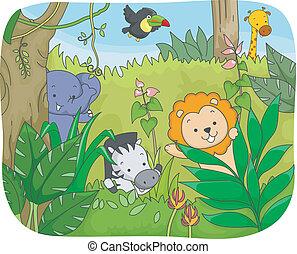 Safari Animals Playing