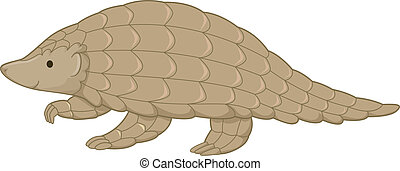 Pangolin - Illustration Featuring a Cute Pangolin