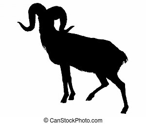 The black silhouette of a ram on white