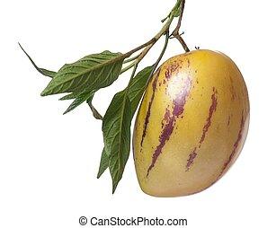 fruta,  Pepino