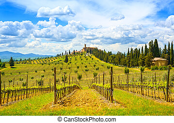 Vineyard, cypress trees rows and medieval village on background in a rural landscape. Val d Orcia land near Siena, Tuscany, Italy, Europe.