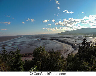 Tidal mudflat - Landscape of a wide tidal mudfalt exposed at...
