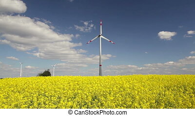 Wind turbines and canola field - Spinning wind turbines and...
