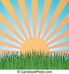 Grass background summerretrett - Grass background ,sun rays...