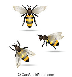 Bees icons set - Realistic flying honey bees set isolated on...