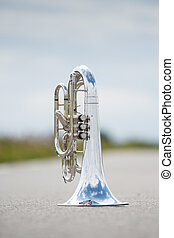Portrait of a silver baritone - Details from a showband,...