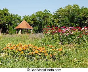 Summer landscape - blooming summer flower in green grass in...