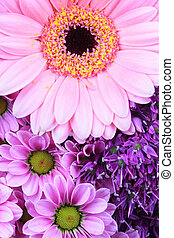 Abstract purple and pink flowers background