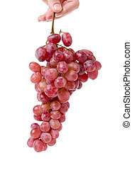 grapes in women hand