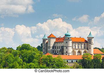 View of Nowy Wisnicz castle, Poland