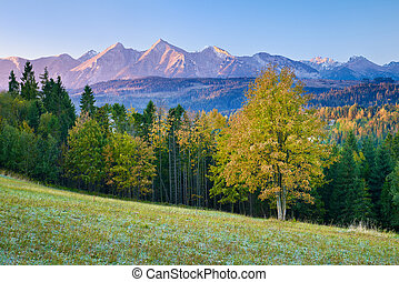 Beautiful dawn over The High Tatra Mountains, Carpathians -...