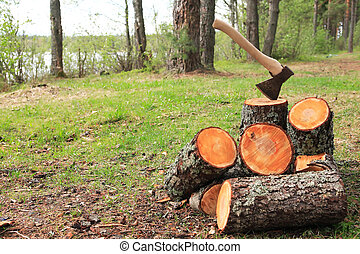 Firewood Splitting. Stack of logs with axe on green clearing...