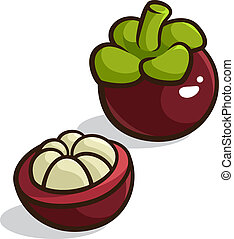 Purple Mangosteen - Vector illustration of a Purple...
