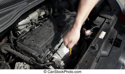 Checking the oil level of a compact car