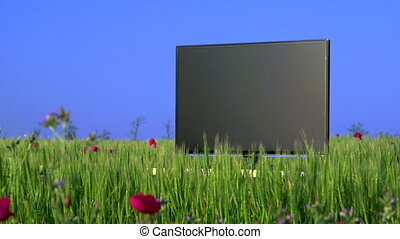High definition plasma TV on green meadow
