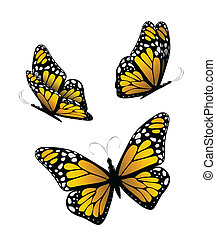 Three butterflies in yellow tones. Vector