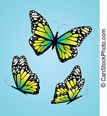 Three colorful butterflies. Vector
