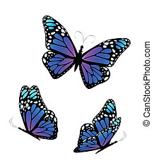 Three butterflies in violet and blue tones. Vector