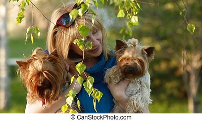 girl and Yorkshire Terriers - pretty blonde in the park with...