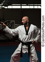Black Belt Karate Expert With Fight Stance - Mature Man...