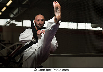 Taekwondo Fighter Pose - Mature Man Practicing His Karate...
