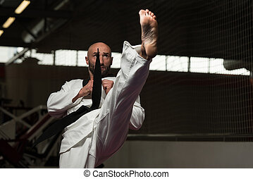 Taekwondo Fighter Expert With Fight Stance - Mature Man...
