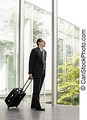 businessman in formal wear holding luggage - businessman in...