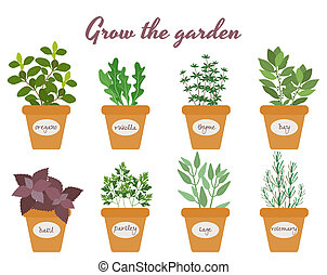 Set of vector herbs in pots with labels - Set of vector...