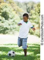 Little boy kicking a football in the park on a sunny day