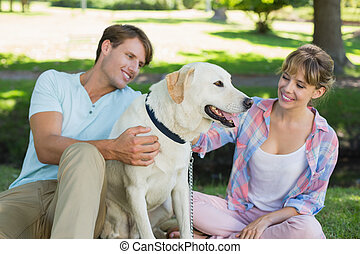 Happy couple sitting with their labrador in the park on a...