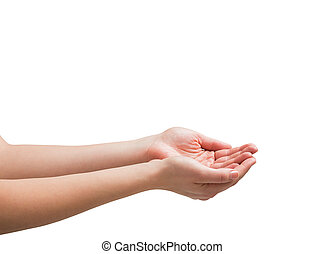 Female hands being held out on white background