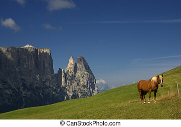 view of dolomites - great view of italian alps