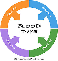 Blood Type Word Circle Concept Scribbled - Blood Type Word...