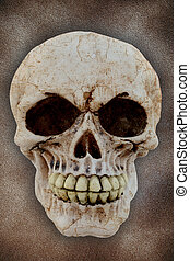human skull on a sand background
