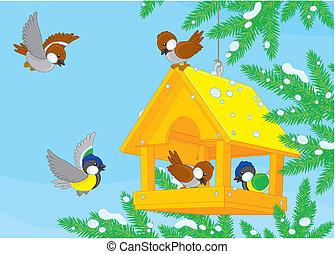 Birdfeeder - Titmice and sparrows around a birdfeeder...