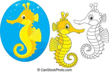 sea horse - Seahorse, three versions of the vector...