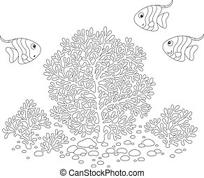 Fishes and corals - Small fishes swimming around corals,...