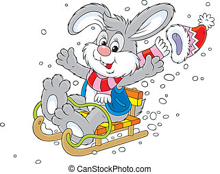 Rabbit sledding - Merry grey bunny sledding down, isolated...