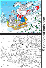 Rabbit sledding - Funny grey bunny sledding down the hill,...